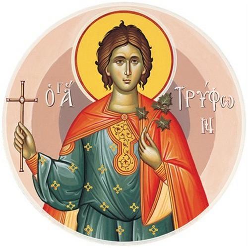 1 Şubat Rab İsα Mesih'i karşılamanın öncü bayramı ve kutsal Şehit Trifon'un anılması