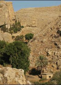 19 Nisan Filistin'deki Antik Mağaraların Aziz Yuhanna'sı