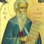 3 Temmuz Kutsal Pederimiz Münzevi Yeşaya