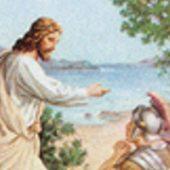 Matta'nın 4. Pazarı