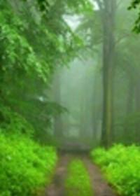 Ruhsal yaşamın başlangıcı: herşeyi Tanrı'dan beklemek