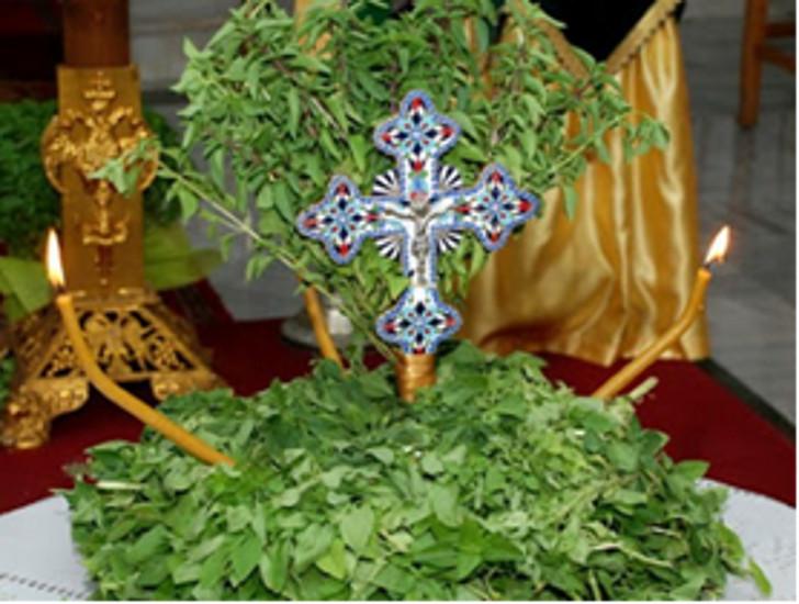 Rabbimizin Kutsal ve Yaşam Veren Haçının Yüceltilmesi Bayramından önceki hafta vaazı