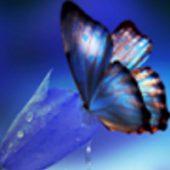 Mânevî uyanıklık ve kendrini kotrol hali (nipsis)