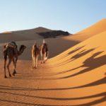 Mısırdan Çıkış ve Kenan Fetihleri